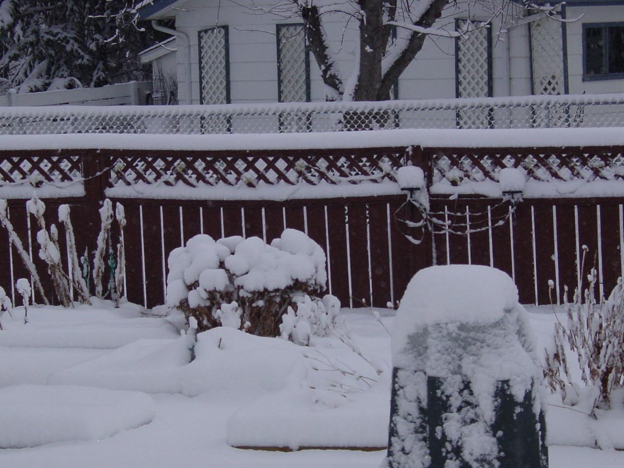 Name:  april snow 002.JPG Views: 43 Size:  324.0 KB