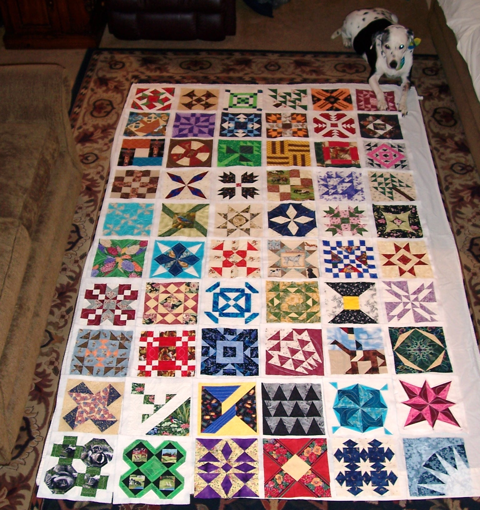 Name:  Pony Quilt First 60 wDog.jpg