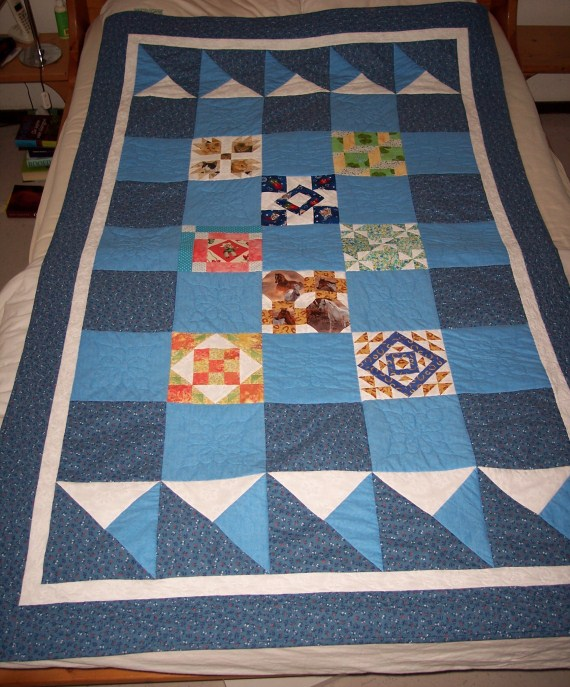 Name:  PonyClubQuilt1 (570 x 687).jpg