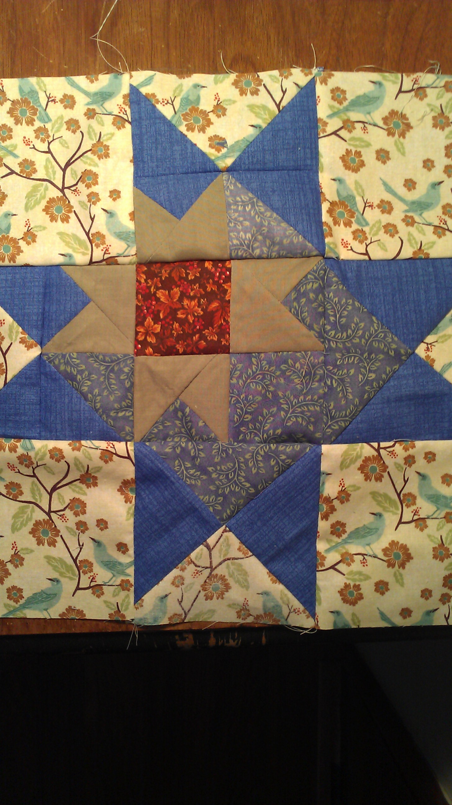 Name:  Carolyn's star - quilterscache.jpg
