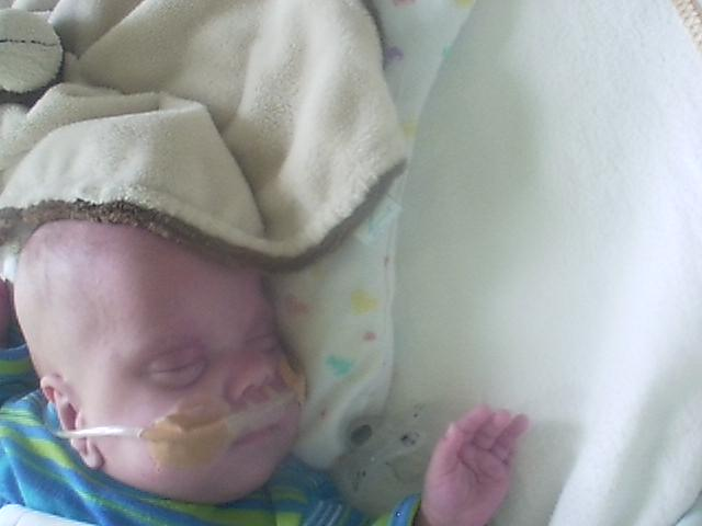 Name:  20130518babybeeld.jpg