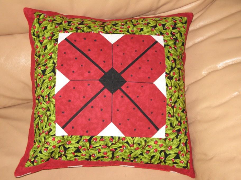 Name:  Ladybugcusion (912 x 684).jpg Views: 85 Size:  171.0 KB