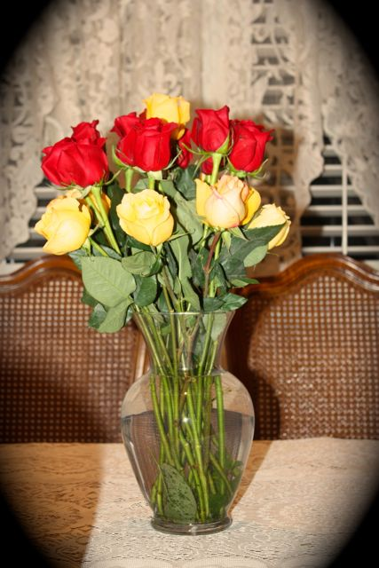 Name:  Roses 2014 #1.jpg
