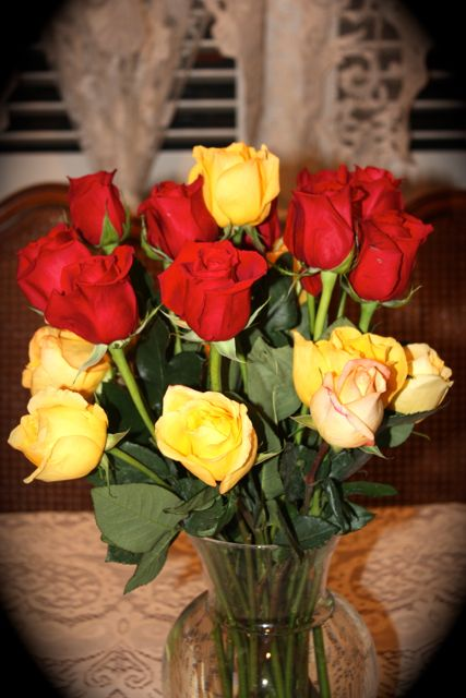 Name:  Roses 2014 #2.jpg