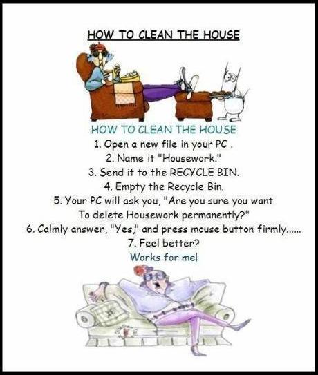 Name:  how to clean the house.JPG