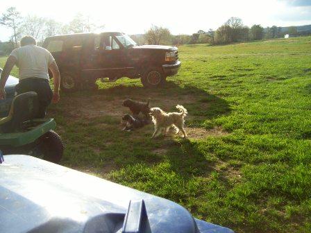 Name:  Woody, binkie and Shubert.jpg Views: 491 Size:  40.5 KB