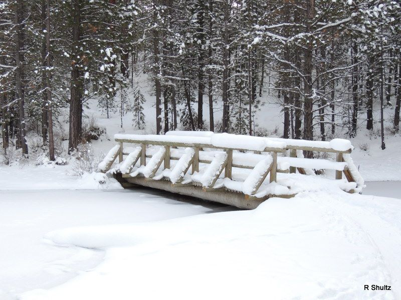 Name:  Bridge at paulina creek.jpg