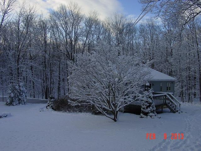 Name:  Snow Feb 9 002.JPG Views: 1499 Size:  170.3 KB