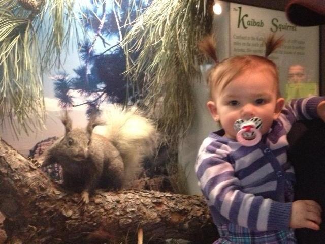 Name:  Addi's hair is the same as the Kaibab squirrel ;-) .jpg Views: 1577 Size:  97.3 KB