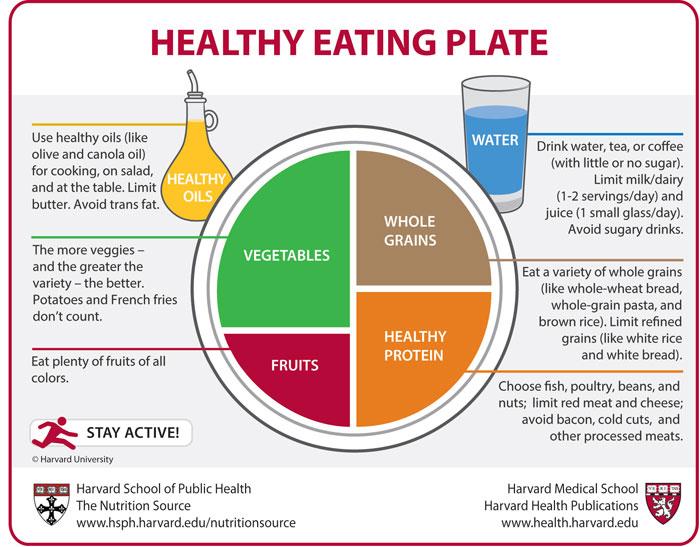 Name:  harvard-healthy-eating-plate (700x547).jpg Views: 90 Size:  98.6 KB