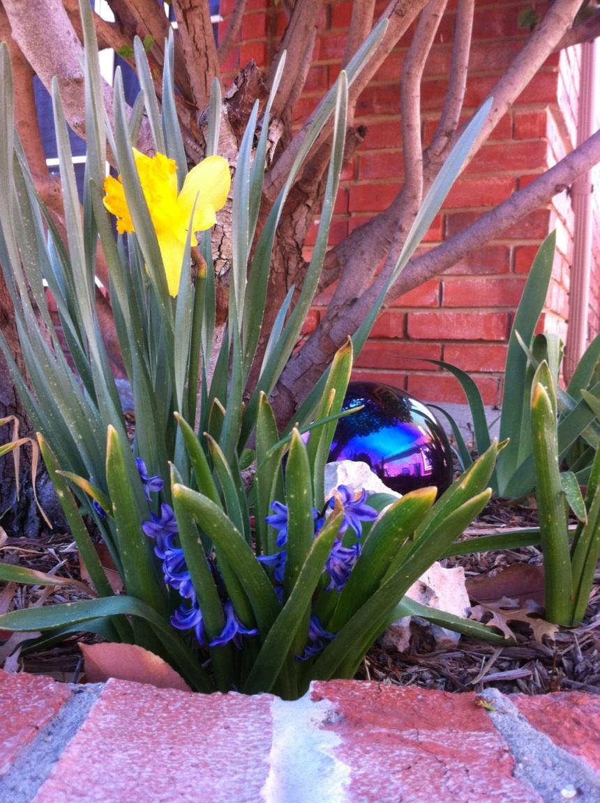 Name:  spring.jpg Views: 1281 Size:  401.4 KB