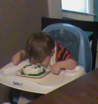 Name:  Colton's first birthday party 036.jpg