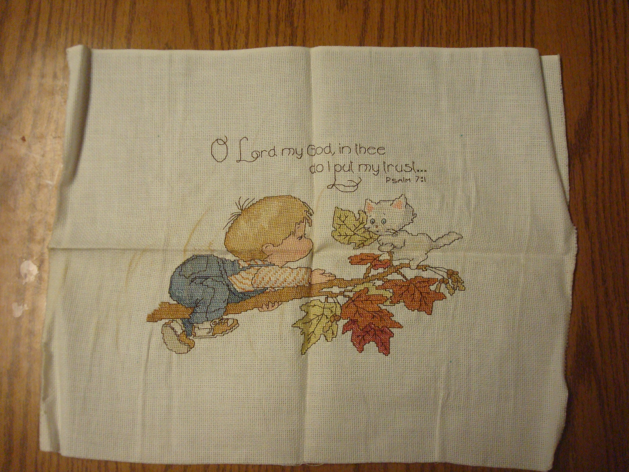 Name:  2012-Jan 30-Janel's cross stitch 001.jpg