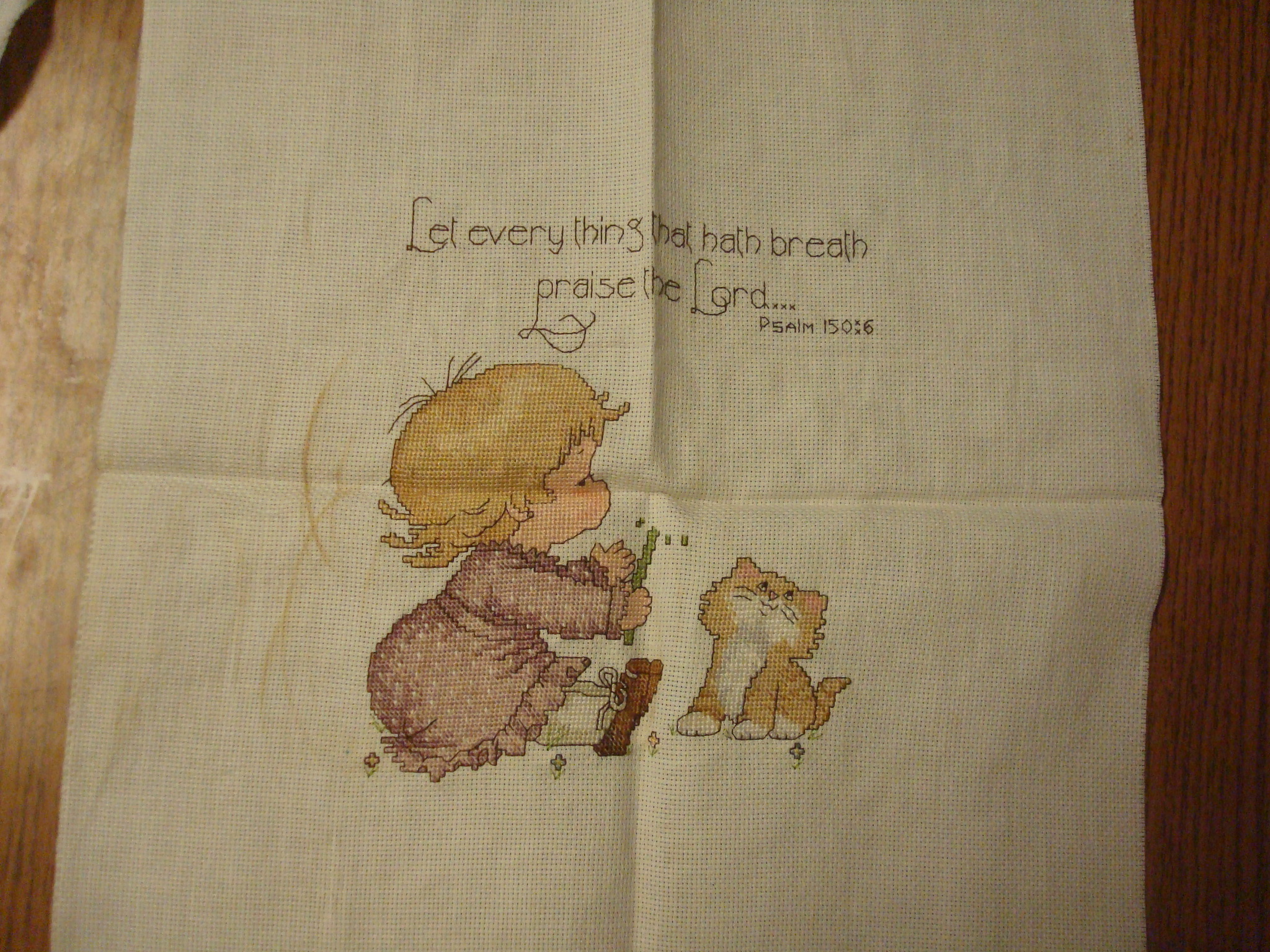 Name:  2012-Jan 30-Janel's cross stitch 004.jpg