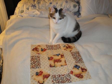 Name:  Kitty Inspector.JPG Views: 350 Size:  37.8 KB