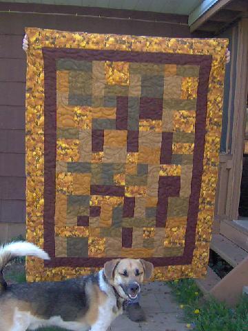 Name:  david's quilt.JPG Views: 177 Size:  35.4 KB