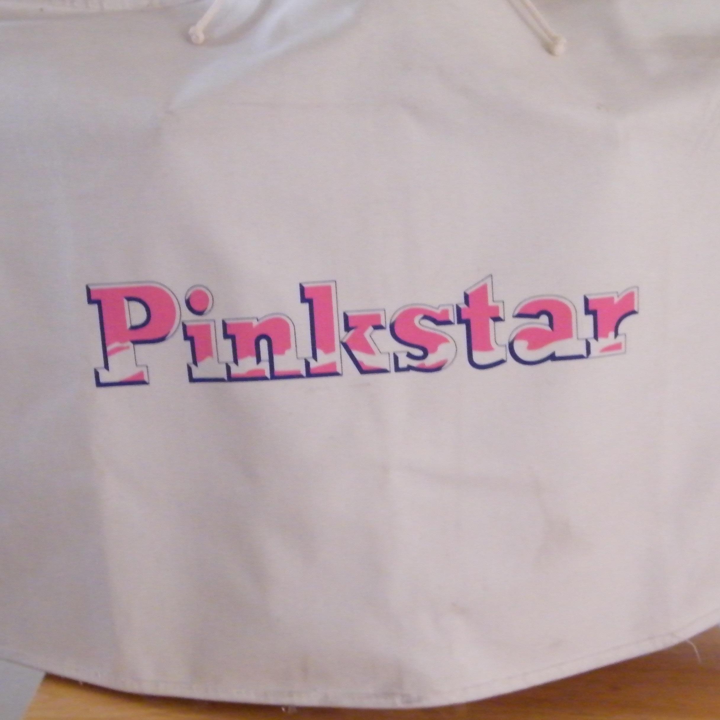 Name:  Pinkster iron # 1.JPG Views: 186 Size:  993.0 KB