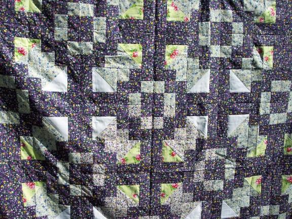 Name:  Gardenpath2 (576 x 432).jpg Views: 477 Size:  158.7 KB