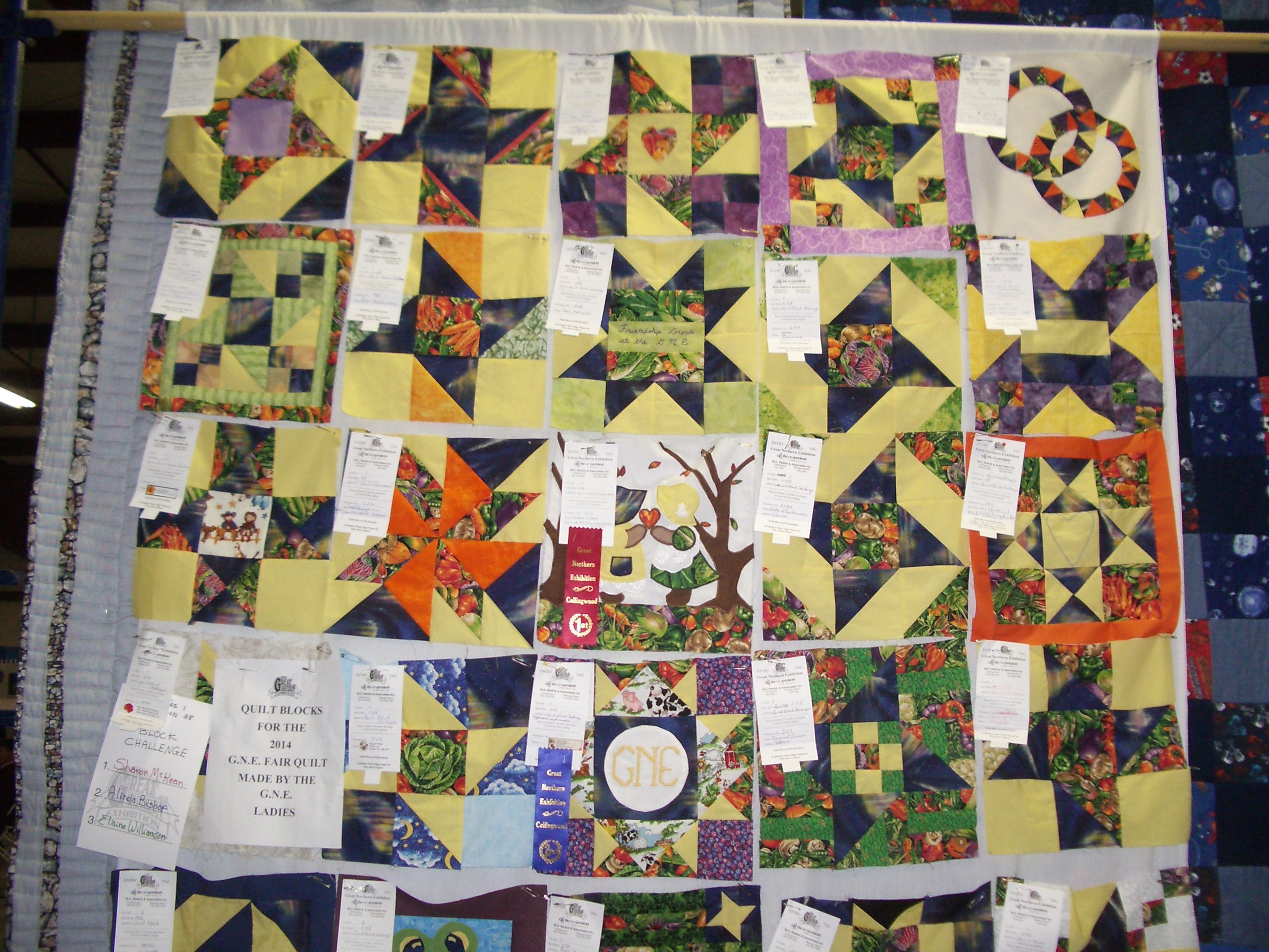 Name:  GNE2013Quilts (5).JPG