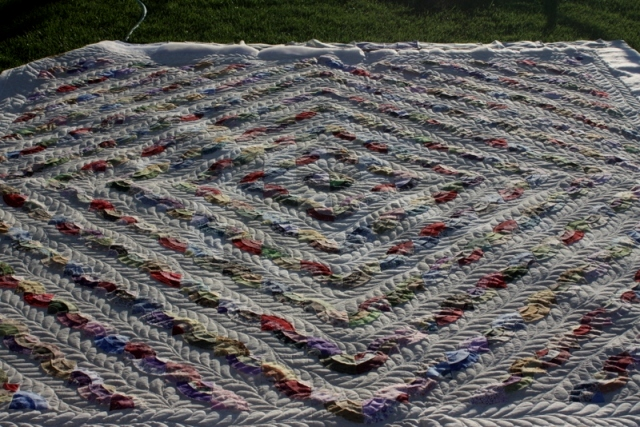 Name:  Scrappy on poing quilted.jpg