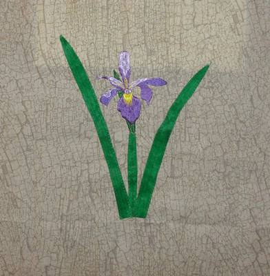 Name:  DSC01904.JPG