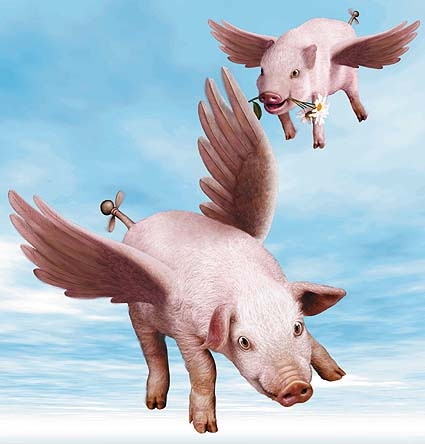 Name:  425AirportFlyingPigs.jpg