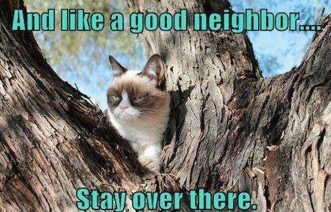 Name:  like a good neighbor.jpg Views: 70 Size:  49.9 KB