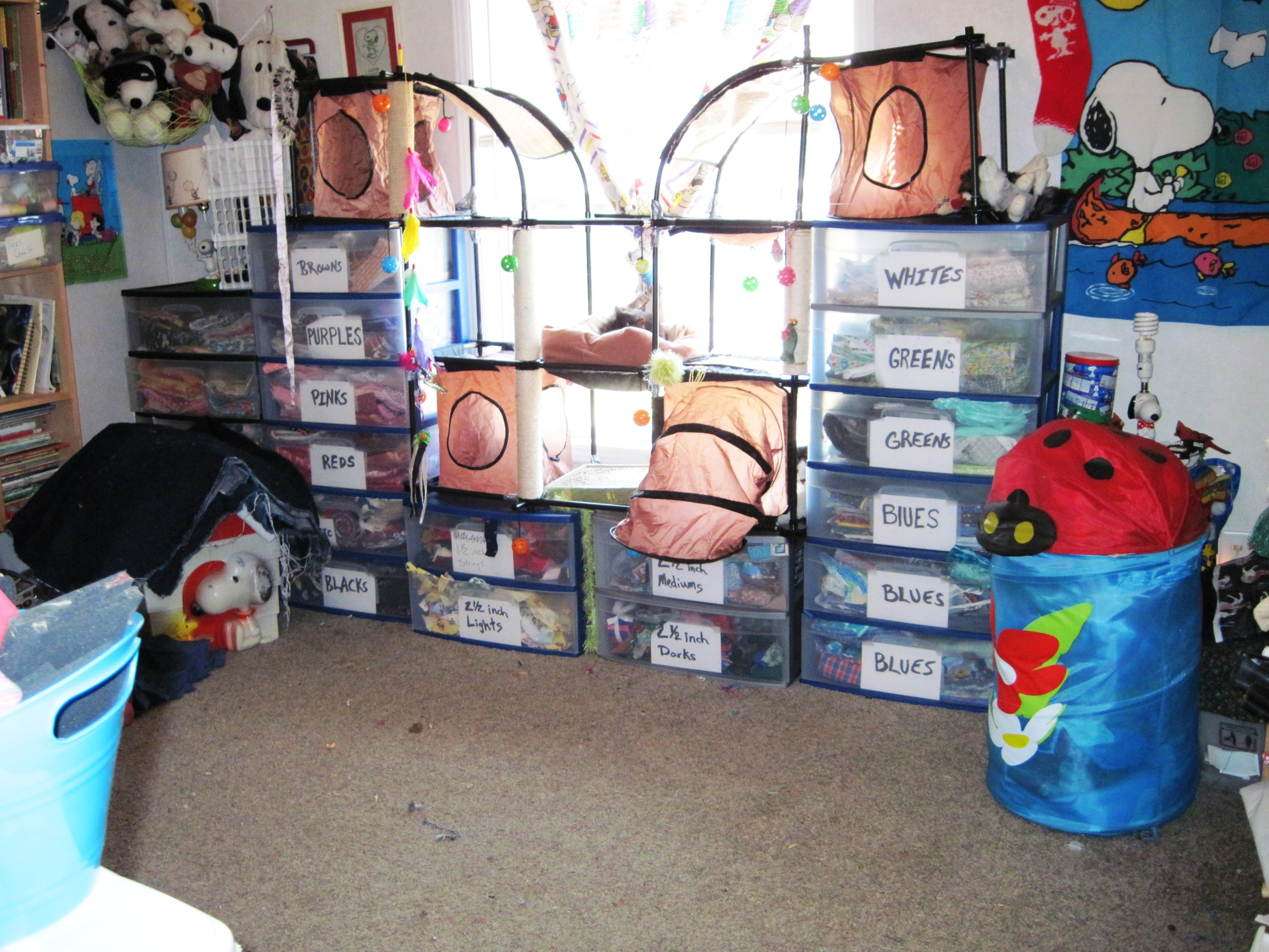 Name:  kitty condo shelves.JPG