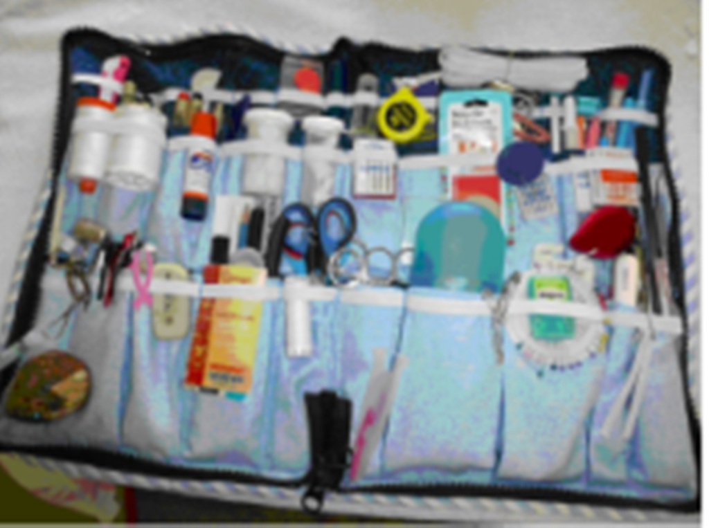 Name:  Zippered Sewing-Quilting Bag - Updated 2015.jpg Views: 670 Size:  143.0 KB