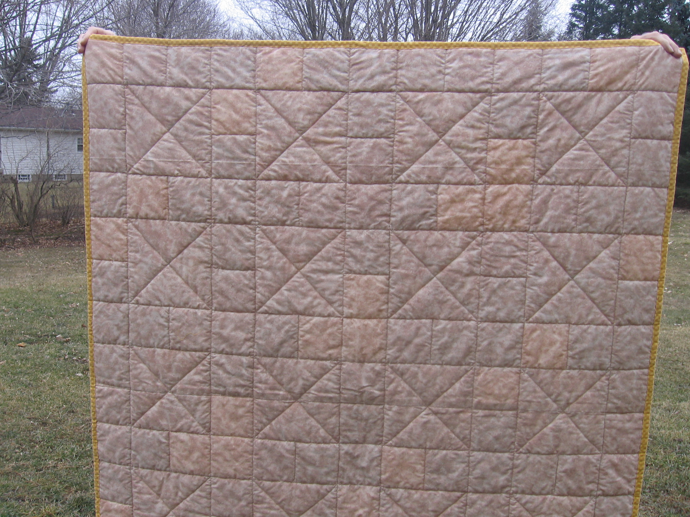 Name:  tracy's quilt 004.JPG