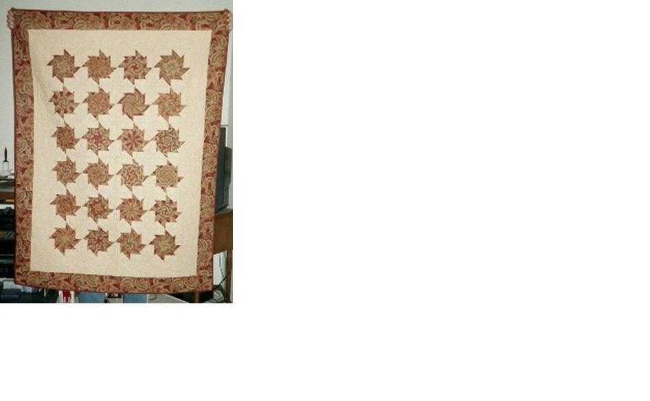 Name:  cara's quilt 2.jpg Views: 72 Size:  37.7 KB