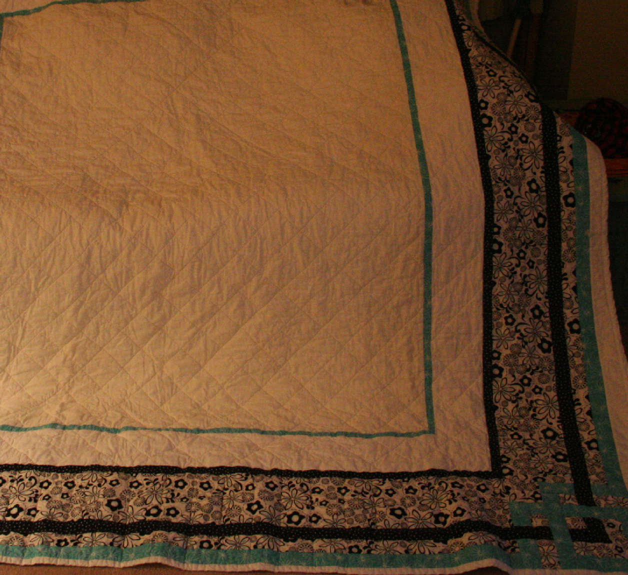Name:  quilt back.JPG