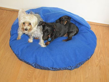 Name:  DogBedBenjiKaceeEmmy2.jpg Views: 3179 Size:  20.4 KB