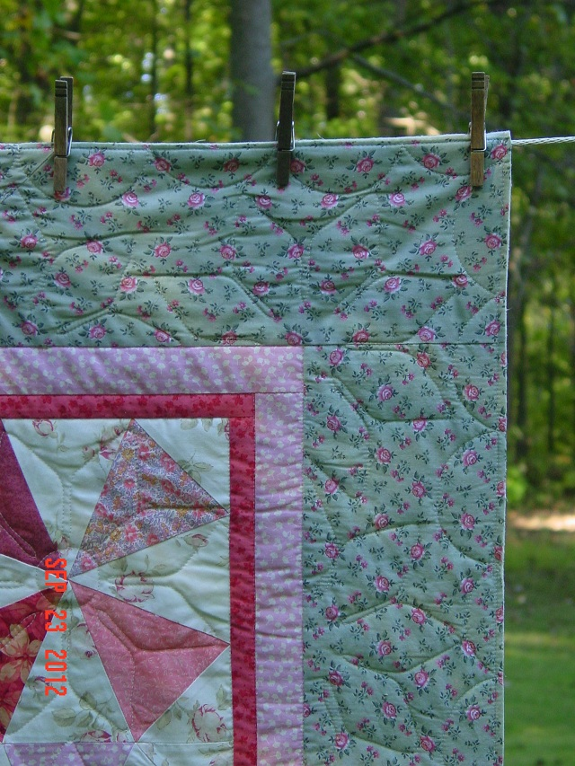 Name:  Pegs 60th bd quilt 005.JPG
