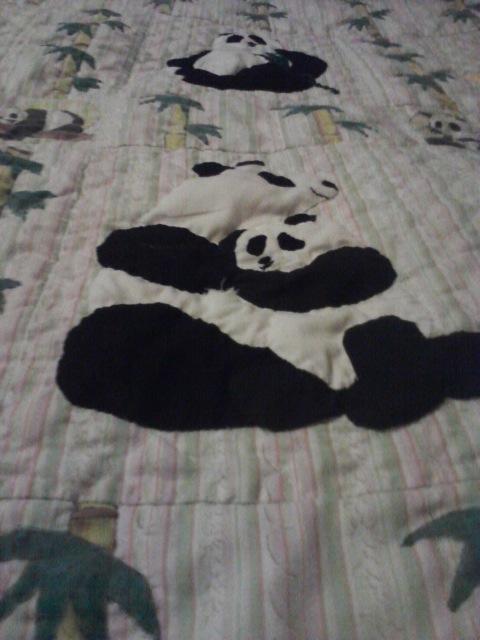 Name:  panda-monium detail.jpg Views: 1282 Size:  80.4 KB