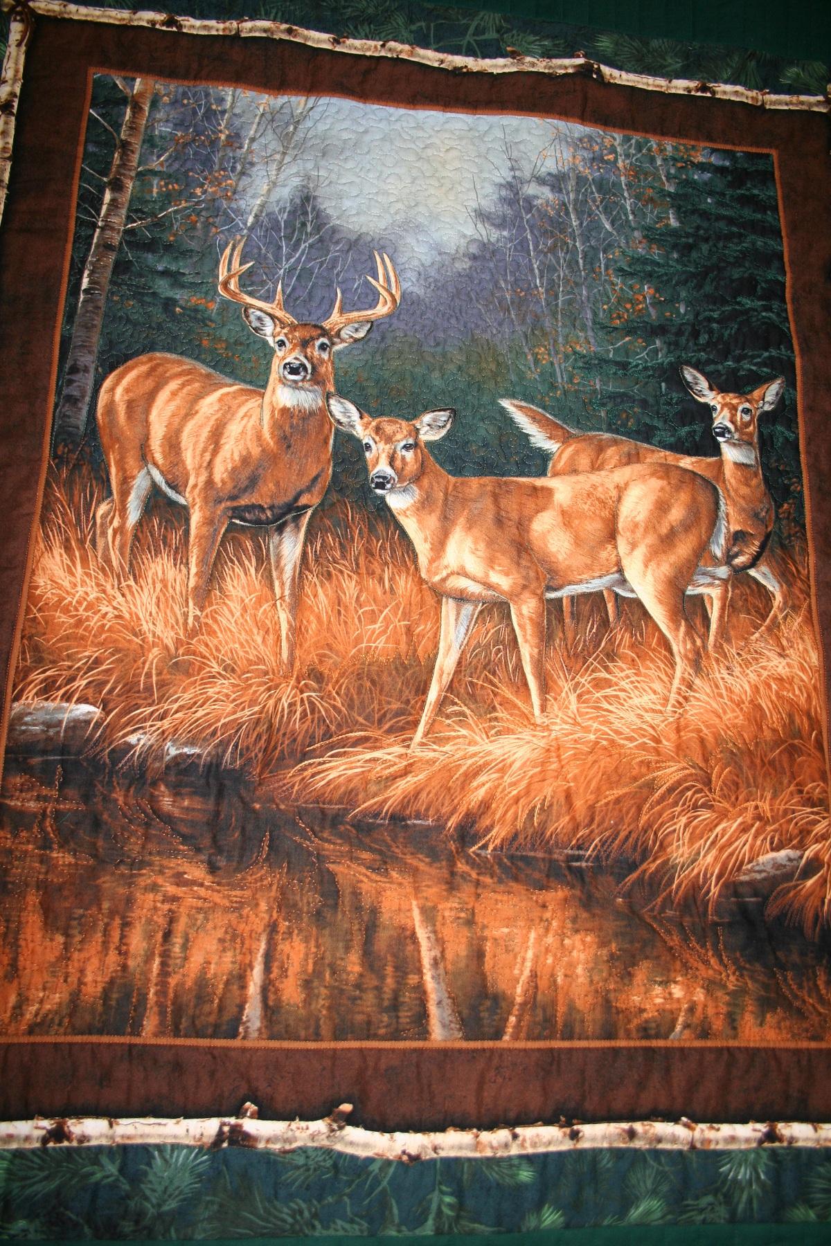 Name:  Michaels Deer-11-16-12-B.JPG Views: 4230 Size:  1.00 MB