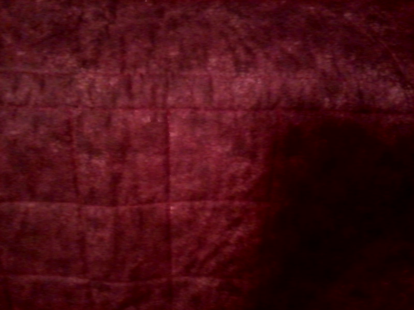 Name:  Xmas Quilt back and quilting.jpg