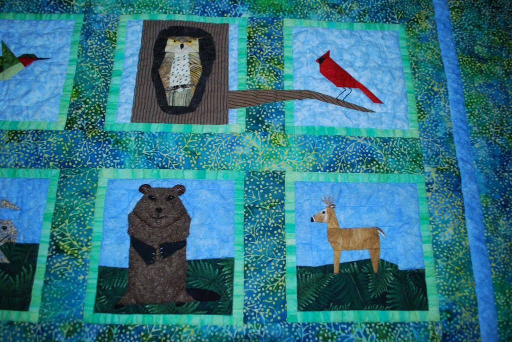 Name:  groundhog quilt - upper right corner.JPG Views: 1739 Size:  515.8 KB