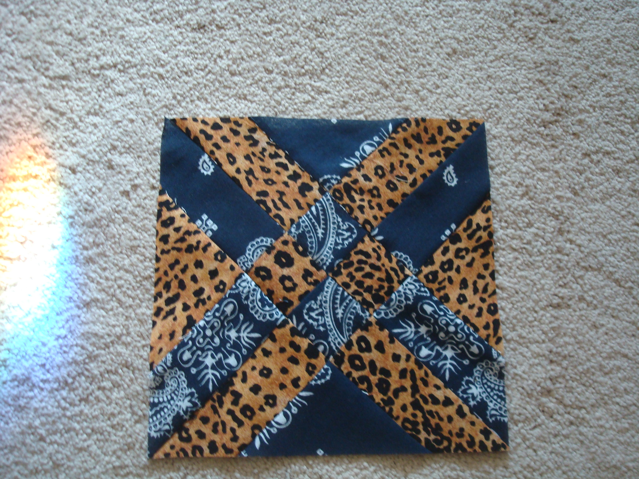 Name:  Anita's arrowhead-bandana & leopard 001.jpg