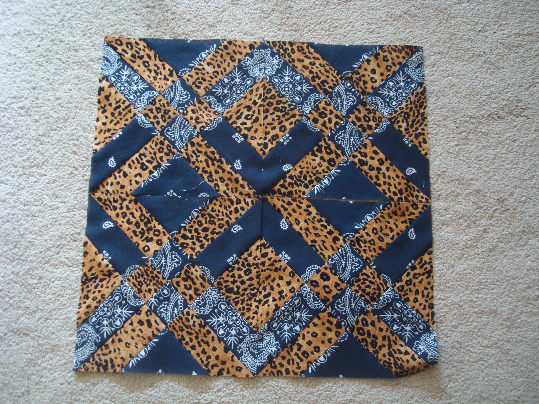 Name:  Anita's arrowhead-bandana & leopard 002.jpg