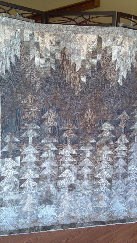 Name:  2013-02-23 20 Misty Pines.jpg Views: 8937 Size:  147.8 KB