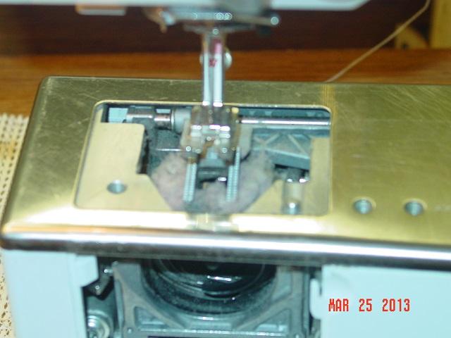 Name:  DP top- crocus- clean machine 002.JPG Views: 1350 Size:  91.2 KB