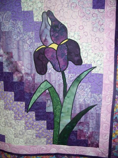 Name:  06-Iris Detail.JPG Views: 3621 Size:  158.2 KB