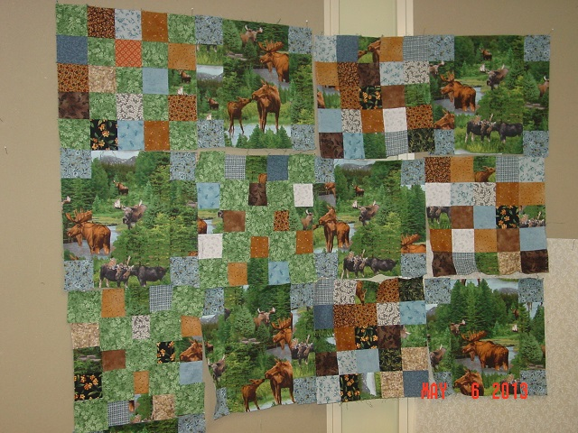 Name:  New moose out of old 002.JPG