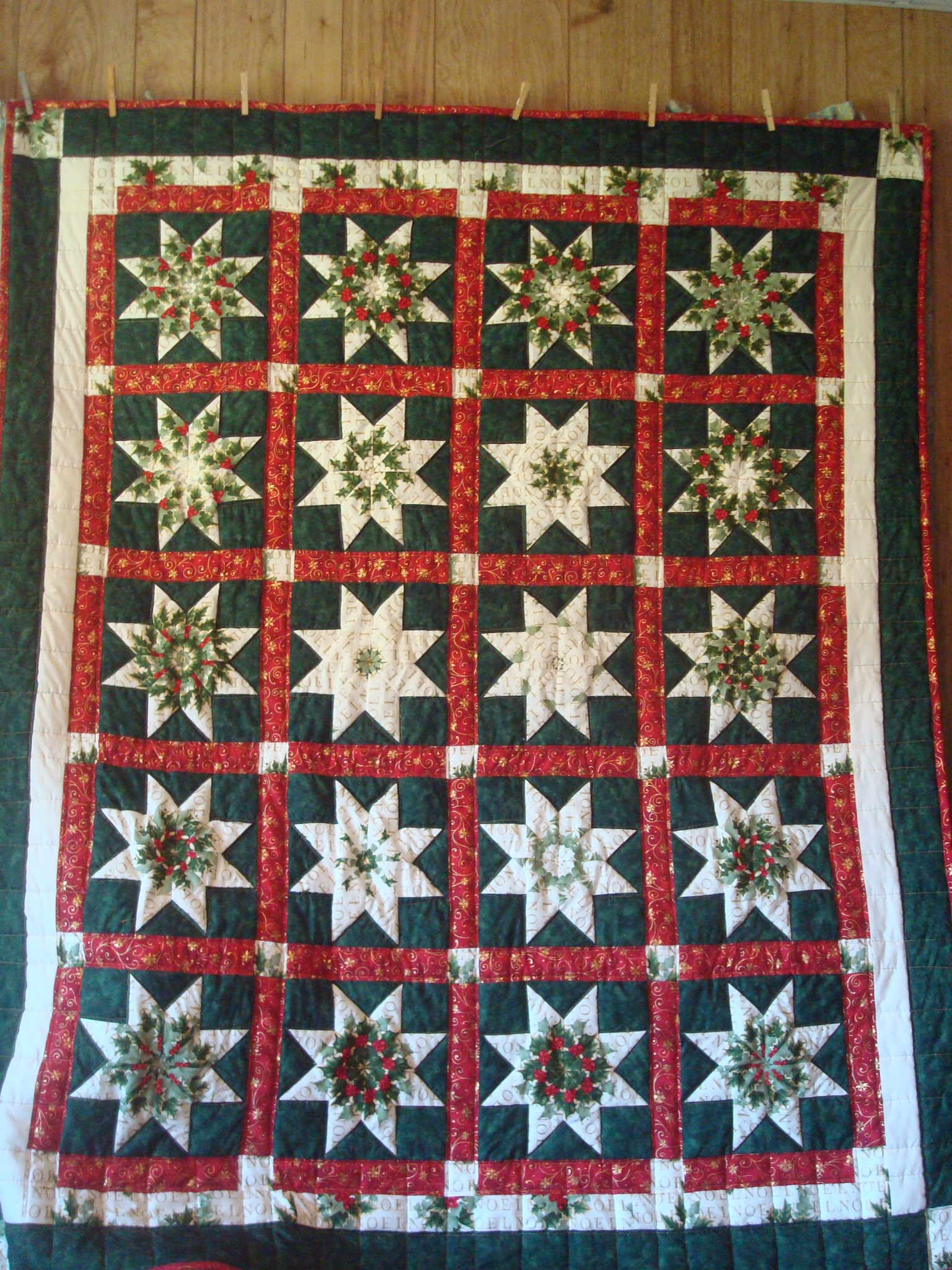 Name:  2013-06-15-poinsettia quilt.jpg