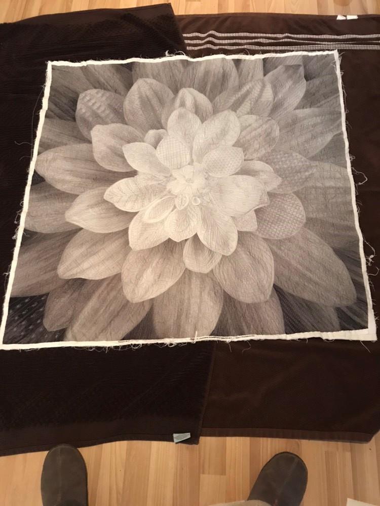 Name:  Big flower - B&W.jpg Views: 2345 Size:  155.1 KB