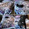dear-jane-collage.jpg