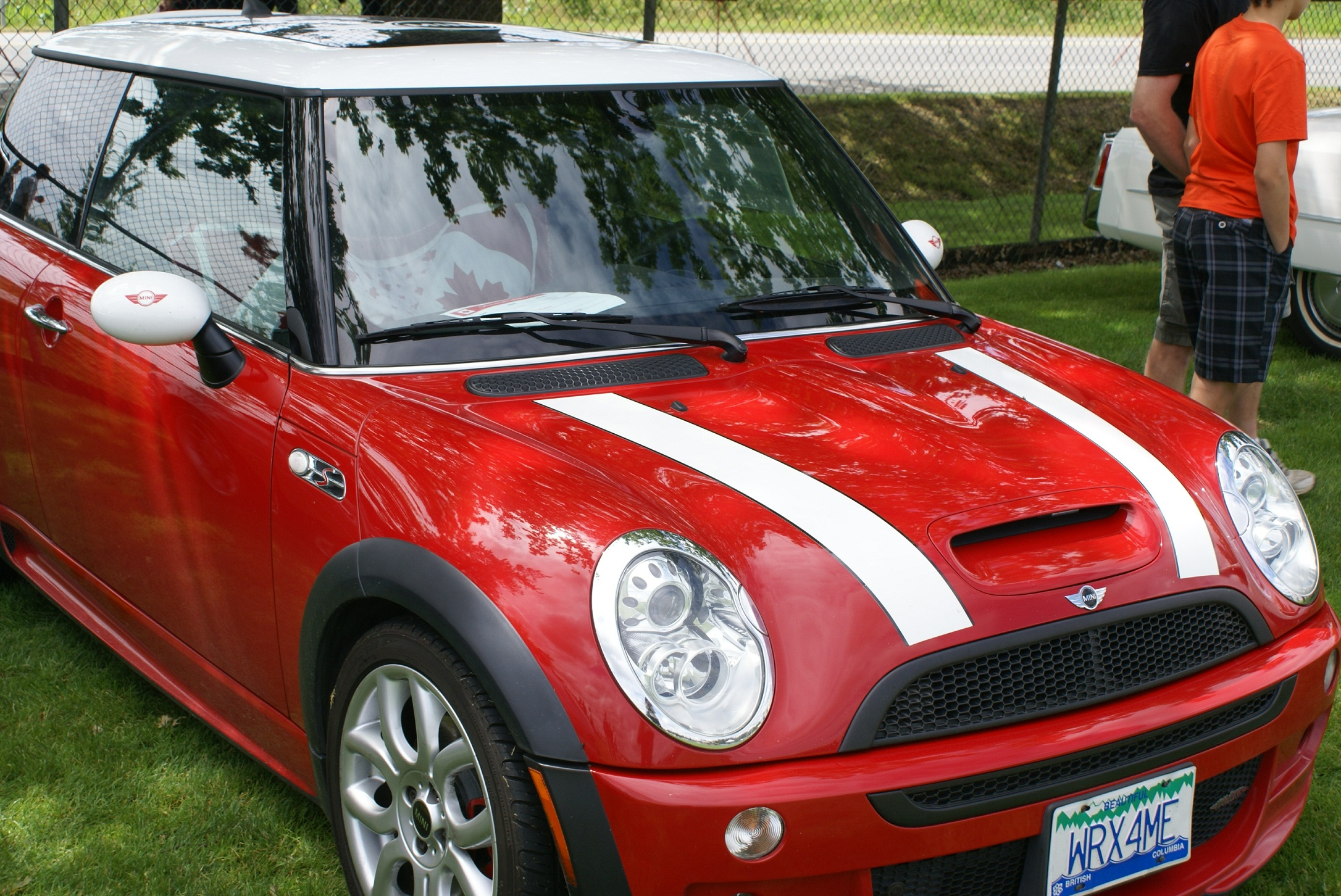 Name:  MINI and quilt.jpg
