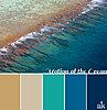 possible-alt-ocean_coastal_color_palette.jpg