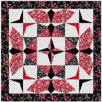Name:  My Star Flight Black and Red.jpg Views: 738 Size:  58.1 KB